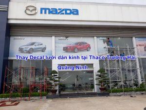 Thay Decal lưới dán kính tại Thaco Trường Hải Quảng Ninh
