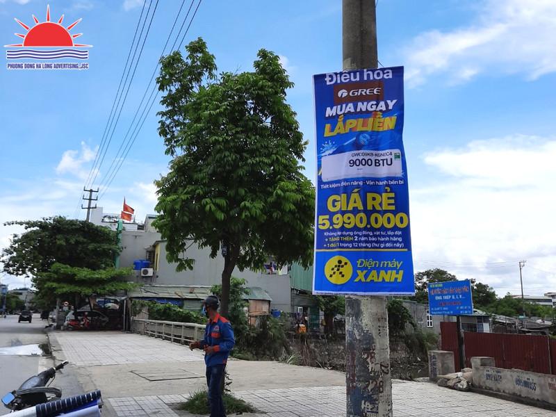 quảng cáo khuyến mãi Điện Máy Xanh
